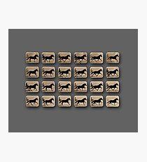 Muybridge - Locomotion Theory 1 - Horse and Cart - Grey Photographic Print