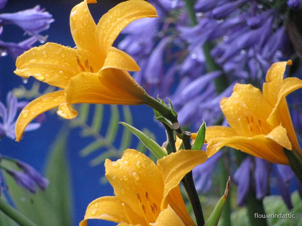 blossom by flowerindattic
