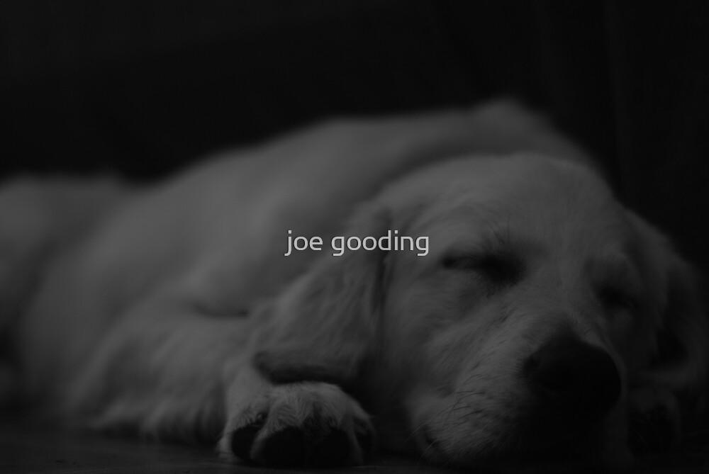 plum tuckered by joe gooding