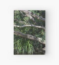Queensland Creek Hardcover Journal
