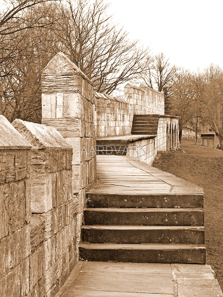 York's City Walls by AARDVARK