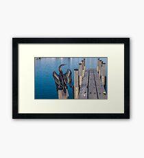 Water bird - Dart  Framed Print