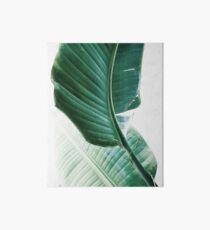 Lámina de exposición Hojas de plátano, Hojas tropicales, Hojas verdes, Hoja, Arte moderno, Arte de la pared, Impresión, Minimalista, Moderno, Escandinavo