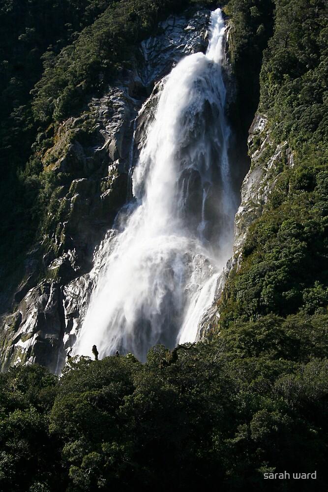Milford Sound by sarah ward