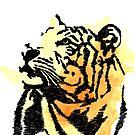 Tiger Splash Farbe von sandyeates