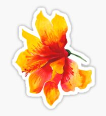 Tropical Flowers Butterflies Hibiscus Turquoise Pattern Sticker