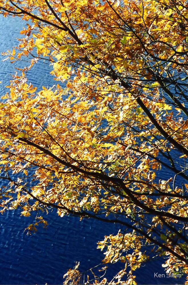 Tree & Lake  by Kenart