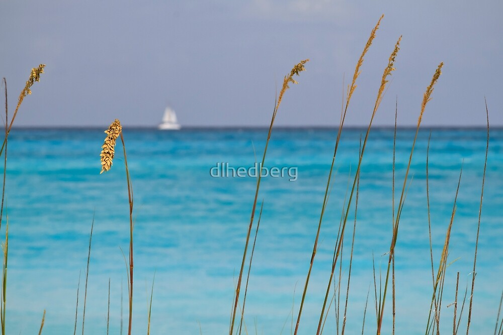 Quiet Day at the Beach by dlhedberg