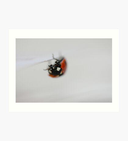 ladybird upside-down Art Print