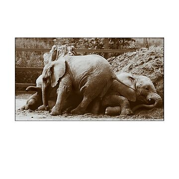 Elephants naptime by Knobrot