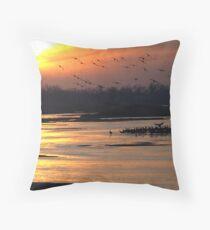 Crane Sunset Throw Pillow