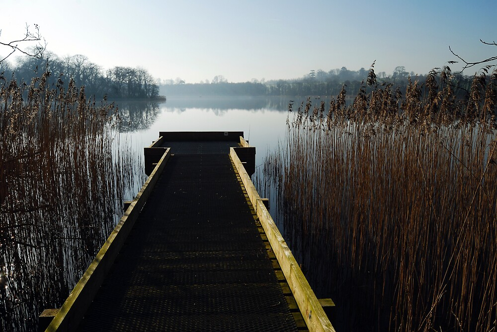 Dock on the lough by ragman