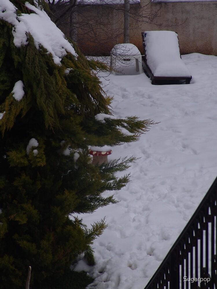 winter08 by Sugarpop