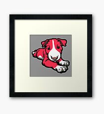 Chilled Bull Terrier Puppy Framed Print