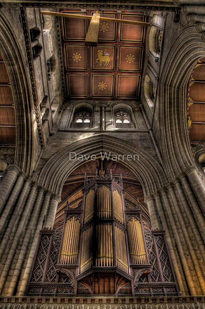 The Organ by Dave Warren