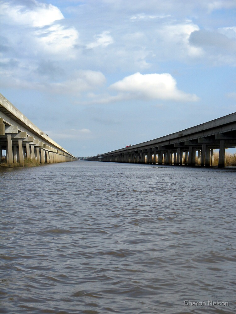 Bridge #2 by Sharon Nelson