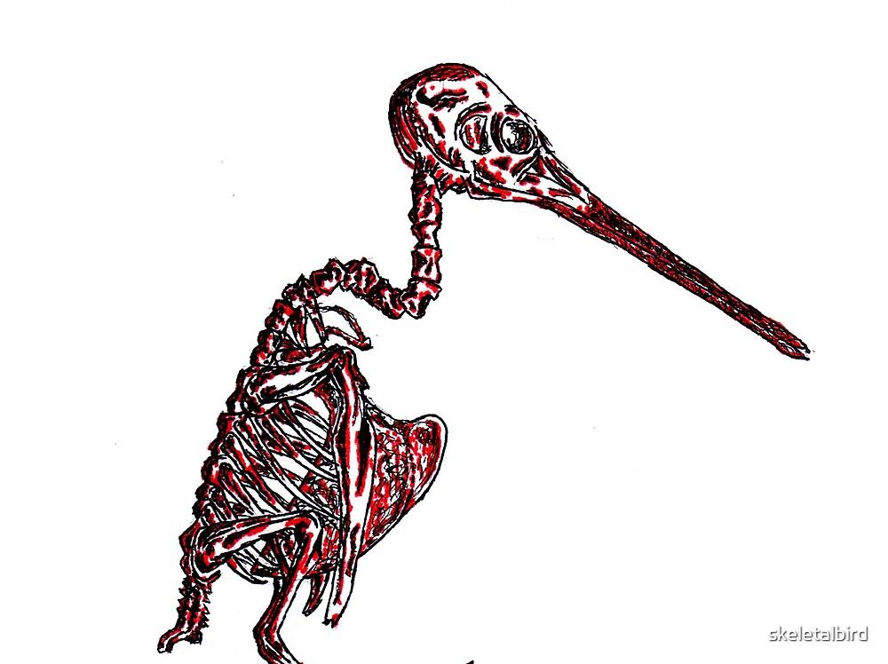 skeletal hummingbird by skeletalbird