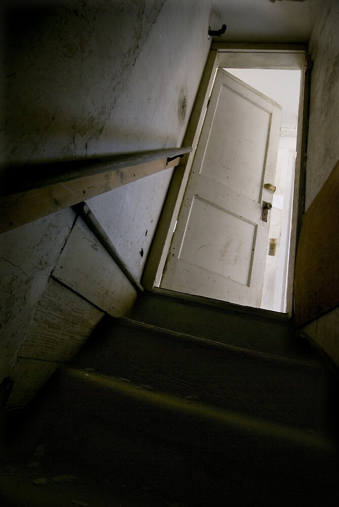 view from the basement by rob dobi