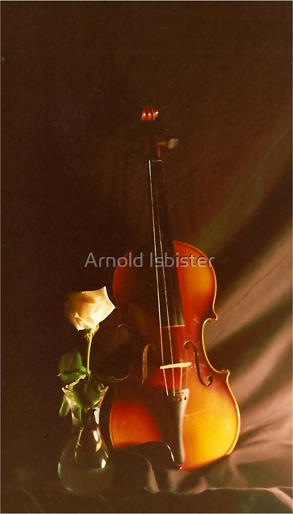Violin & Rose by Arnold Isbister