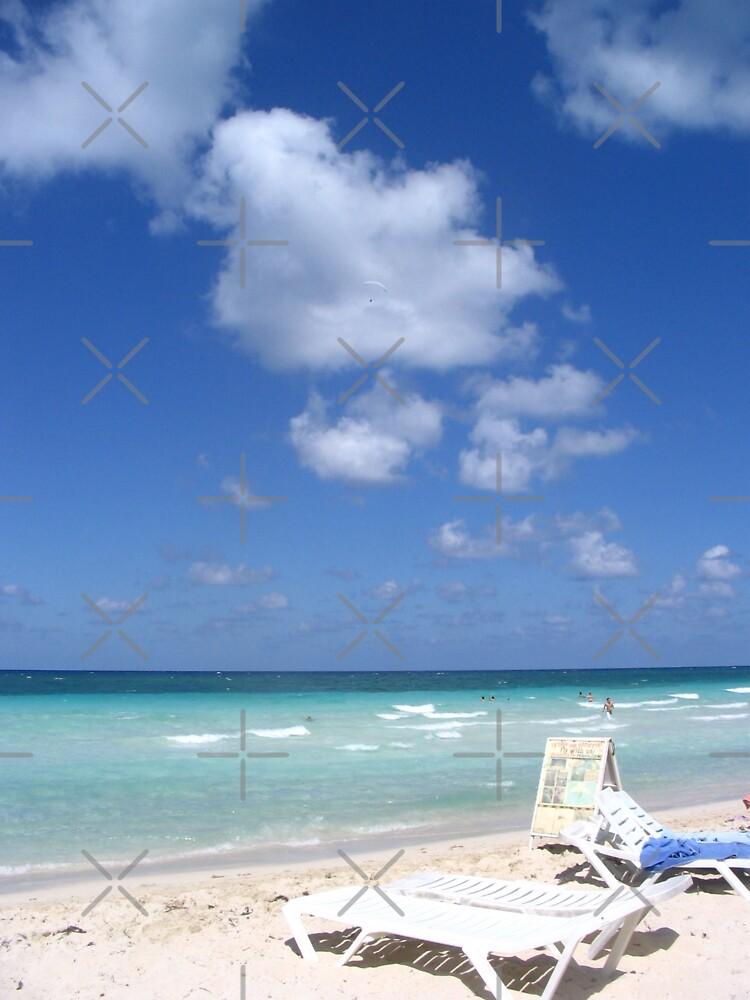 beach dreams by debfaraday