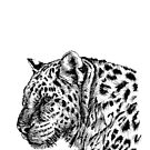 Leopard-Skizze von sandyeates