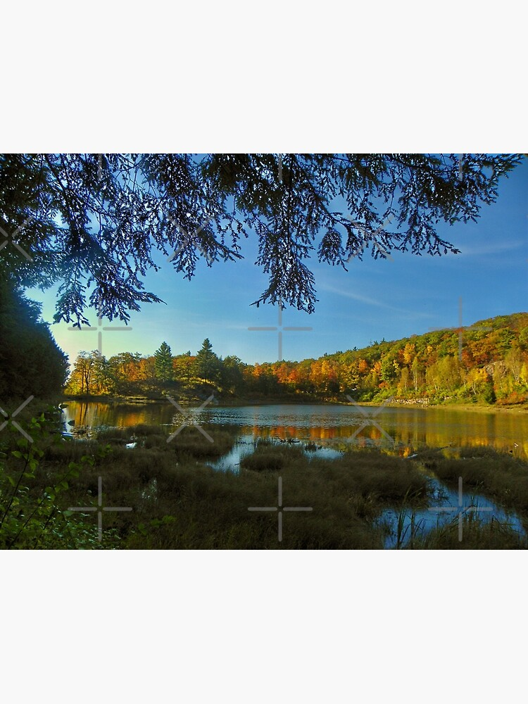 Autumn Serenity by debfaraday