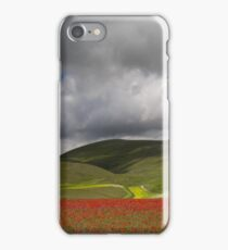 Glorious Fields of Color iPhone Case/Skin