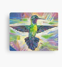 Warrior (Purple-throated mountaingem hummingbird) painting - 2016 Canvas Print