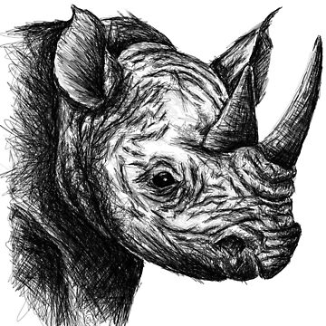 Rhino Sketch by sandyeates
