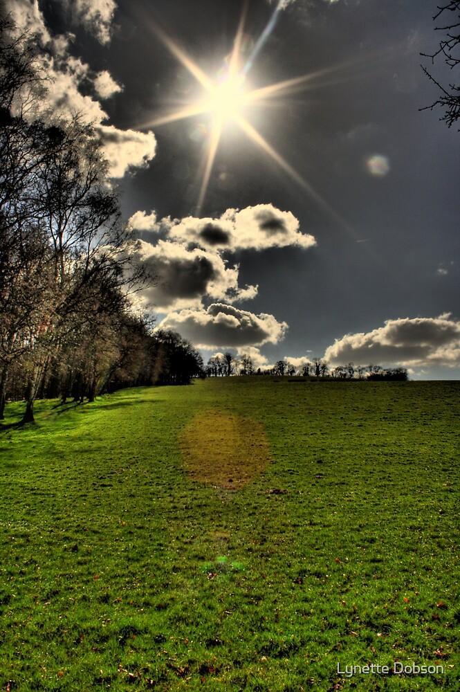 Sparkling sun by Lynette Dobson