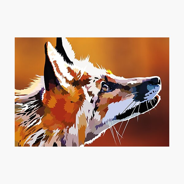 Staring Fox Photographic Print