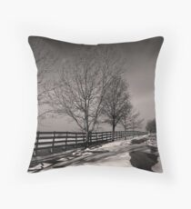 Winter Paddocks Throw Pillow