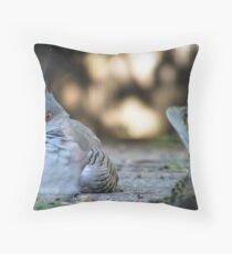 Crested pigeon Throw Pillow