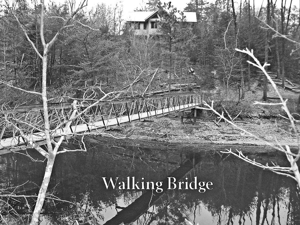 The Walking Bridge by DavidGates