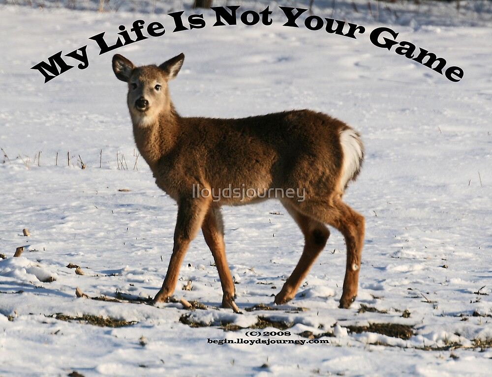 My Life Is Not Your Game by lloydsjourney
