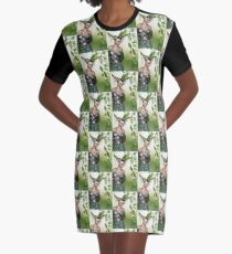 What's in your fateful glance? Graphic T-Shirt Dress