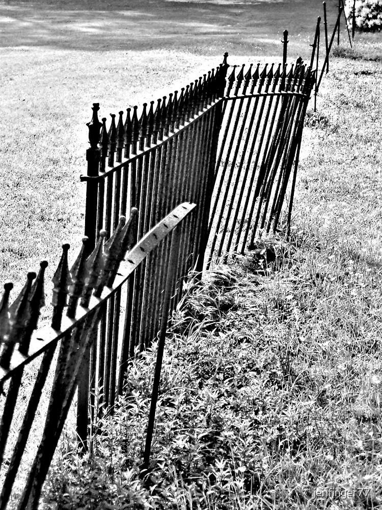 Fenceline by jenfinger77