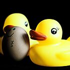 Two Rubber Duckies and One Egg by Evita