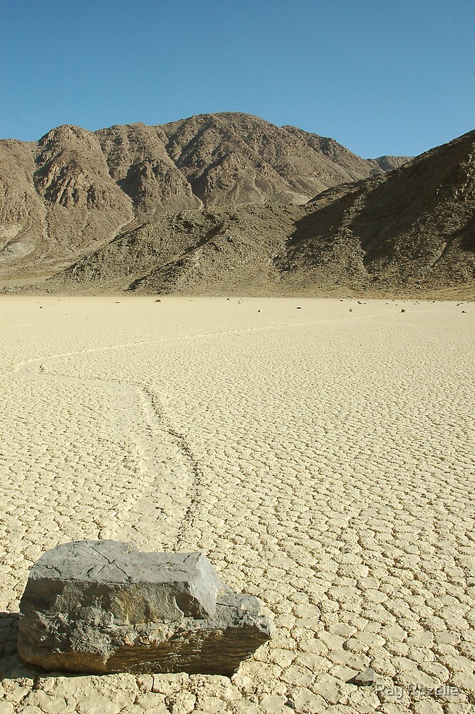 Death Valley Racetract by Ray Rozelle