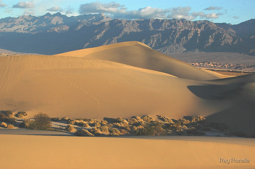 Death Valley Golden Dunes by Ray Rozelle