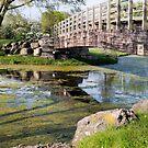 River Below by disizitstudios
