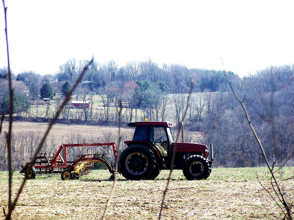 Farm land by Judi Taylor