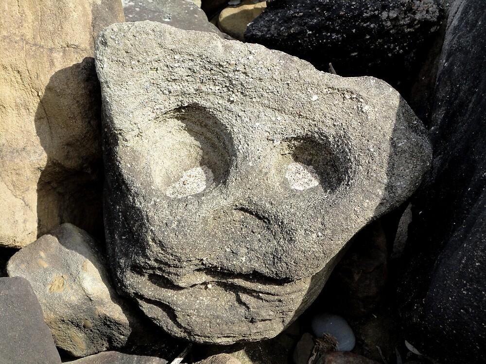 Rocky face, Royal National Park,NSW Australia 2012 by muz2142