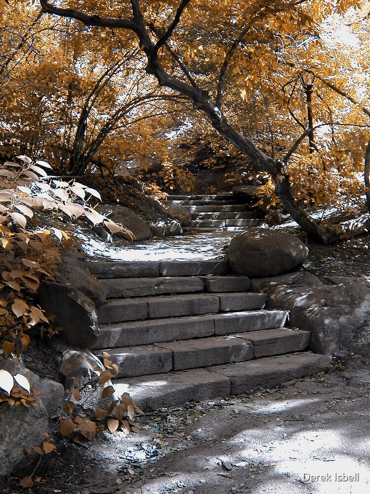 Central Park by Derek Isbell