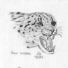 Snow Leopard by georgieboy98