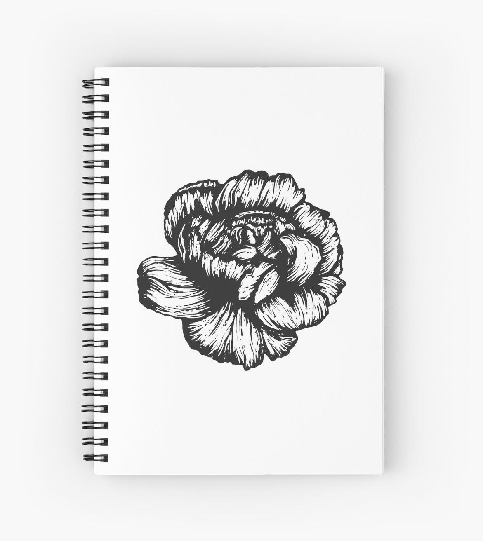 Carnation January Birth Flower Black White Pen Drawing Spiral