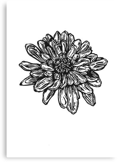 fleur de naissance de chrysanth me novembre dessin de stylo noir et blanc impressions sur. Black Bedroom Furniture Sets. Home Design Ideas