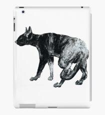 Black Cat Black Cat  iPad Case/Skin