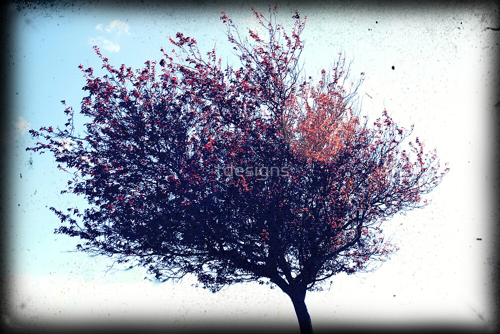 Red Tree by tdesigns
