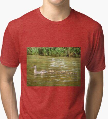 A Dozen Ducklings Tri-blend T-Shirt